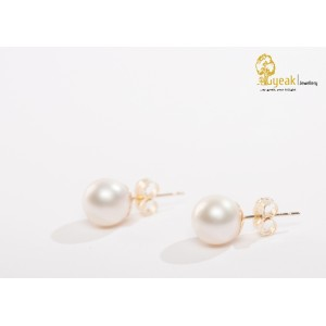 Golden Innocence-14kt yellow gold studs in Akoya Pearls